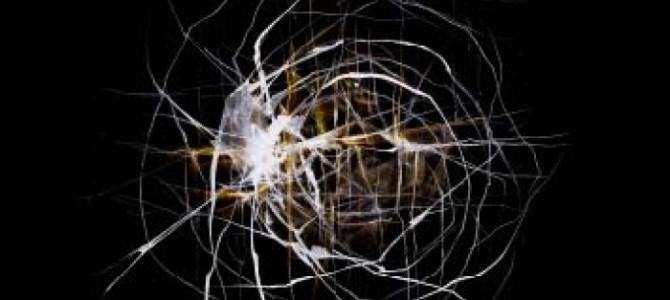 Sensorimétrica: Celda, el mundo continúa, el mundo gira